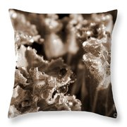 Details In The Dew Sepia Throw Pillow