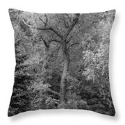 Determination 2 Monochrome Throw Pillow