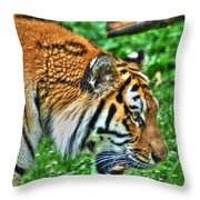Determination In The Tigers Stare Throw Pillow