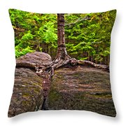 Determination Painted Throw Pillow