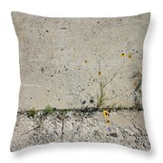 Determined Life Throw Pillow