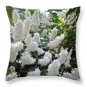 Deutzia Scabra Throw Pillow