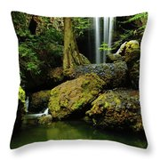 Devil Creek Falls  Throw Pillow