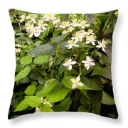 Devil Plant Throw Pillow