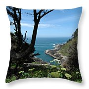 Devil's Churn Oregon Coastline Throw Pillow