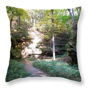 Devil's Punch Bowl Wildcat Den Throw Pillow