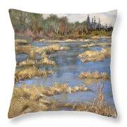 Devon Bog Oil Throw Pillow