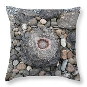 Devon Dartington Hall Stones Throw Pillow