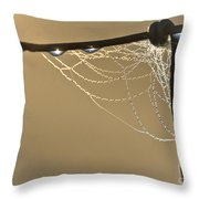 Dew And Webs Throw Pillow