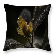 Dew Drops And Crystals Throw Pillow