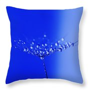 Dew Drops On Dandelion Seed Throw Pillow