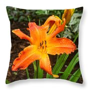 Dew Drops On Golden Lily Throw Pillow