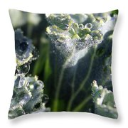 Dew Drops On Silvery Frill Throw Pillow
