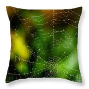 Dew Drops On Spider Web  Throw Pillow