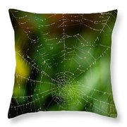Dew Drops On Spider Web 3 Throw Pillow
