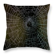 Dew Drops On Spider Web 5 Throw Pillow