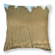 Dew Fog And Grasses Throw Pillow