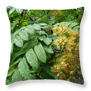 Dew Go On Throw Pillow