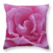 Dew Kissed Rose Throw Pillow