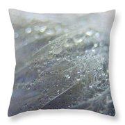 Dew On Down Throw Pillow