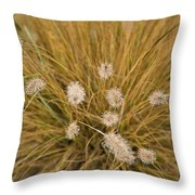 Dew On Ornamental Grass No. 3 Throw Pillow
