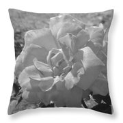 Dew Rose Throw Pillow