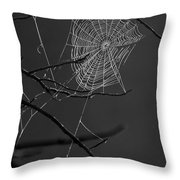 Dew Web-signed-#3322 Throw Pillow