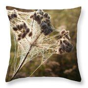 Dewdrops On A Web Throw Pillow