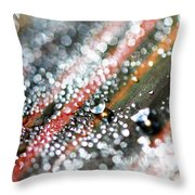 Dewdrops On Durban Throw Pillow