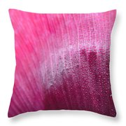 Dewdrops On Petal Throw Pillow