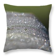Dewdrops On Wyoming's Leaves Throw Pillow