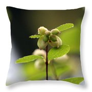 Dewey Buds Throw Pillow