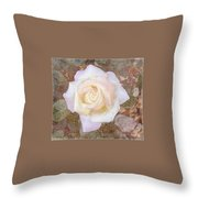 Dewy Dawn Peace Rose Throw Pillow