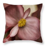 Dewy Pink Painted Begonia Throw Pillow