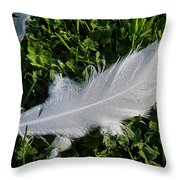 Dewy Swan Feather Throw Pillow
