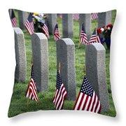 Dfw National Cemetery Throw Pillow