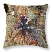 Diadema Urchin Throw Pillow