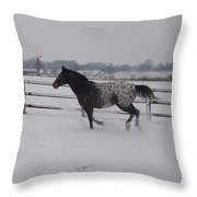 Diamond Appaloosa In The Snow Throw Pillow