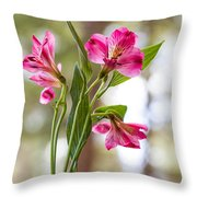 Diamond In The Rough Throw Pillow