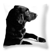 Diamonds Are A Dogs Best Friend Throw Pillow