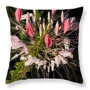 Diane's Flower Throw Pillow