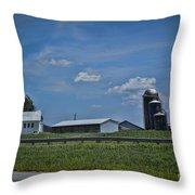 Diary Farm Throw Pillow