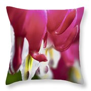 Dicentra Bleeding Heart Backlit Macro Throw Pillow
