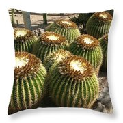 Mother-in-law's Cushion Throw Pillow