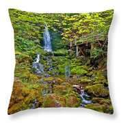 Dickson Falls In Fundy Np-nb Throw Pillow