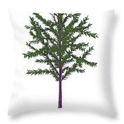 Dicroidium Prehistoric Seed Plant Throw Pillow