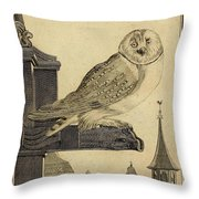 Die Schleyer Eule Throw Pillow