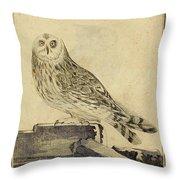 Die Stein Eule Or Church Owl Throw Pillow