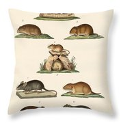 Different Kinds Of Mice Throw Pillow
