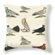 Different Kinds Of Pigeons Throw Pillow